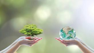 Gobernanza de los recursos naturales