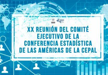 XX reunión Comité ejecutivo-estadistica ok