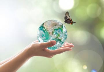 Imagen medio ambiente