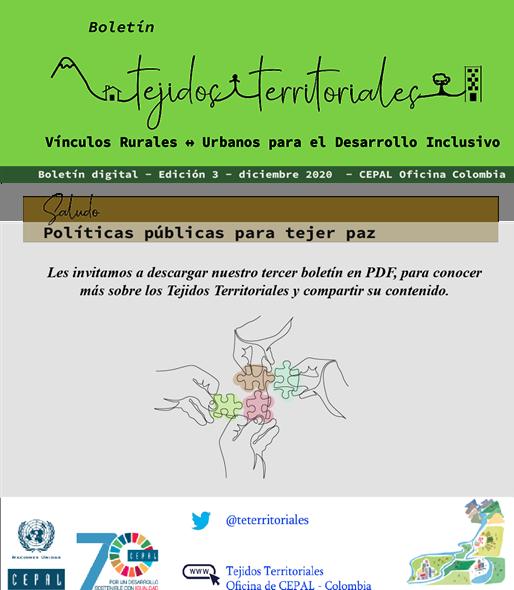 Boletín Tercera Edición, Diciembre 2020