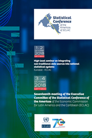 Poster of the seventeenth meeting of the Executive Committee SCA-ECLAC